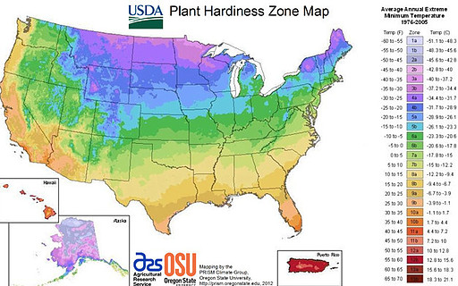 what is ashwagandha for - US zone map