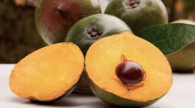 what is lucuma - lucuma fruit