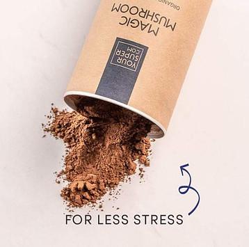 what is magic mushroom - less stress pic