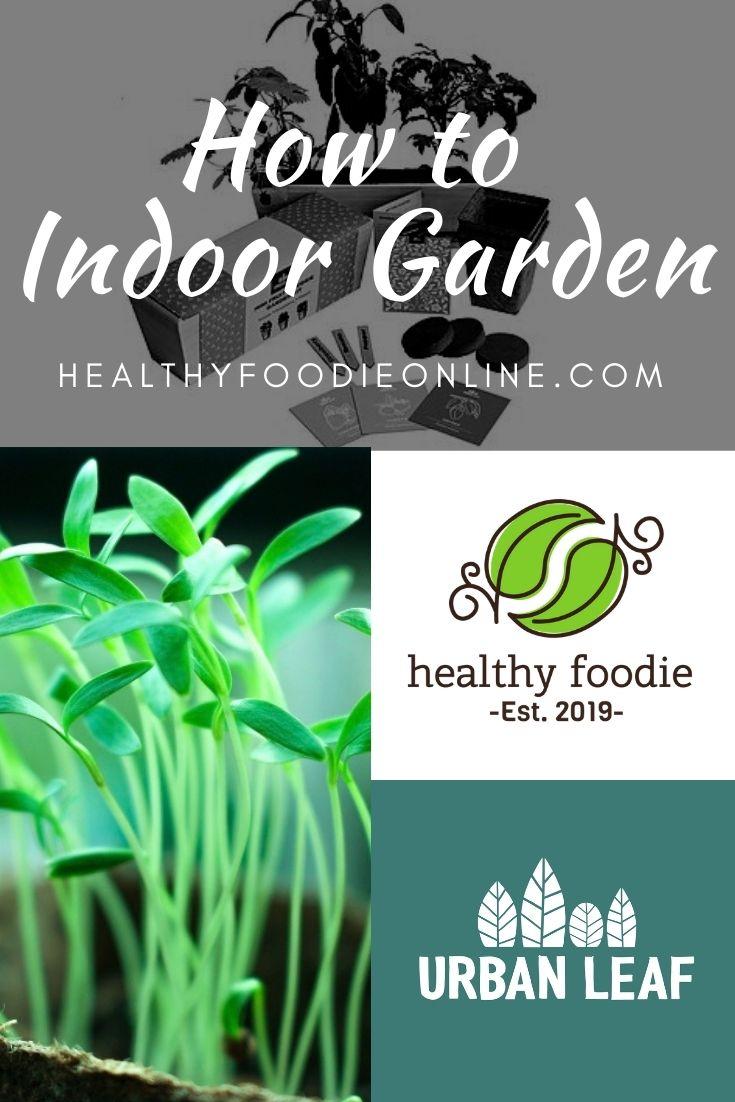 How to Indoor Garden