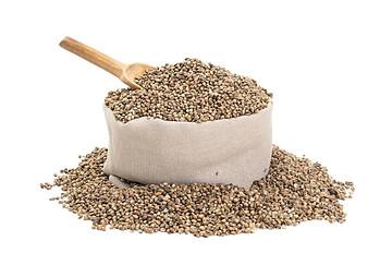 what is hemp protein