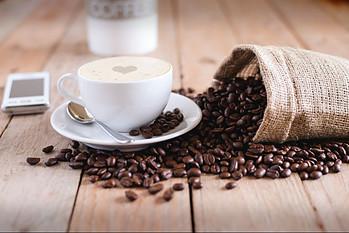best coffee french press